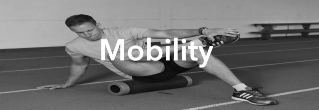 mobility-220px-1-copy.jpg